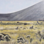 "Arizona Pronghorn 2011 (18"" x 36"")"