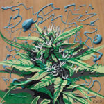 """Kevin's Bud 2007 (5"""" x 5"""")"""