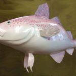 Whole Foods Codfish