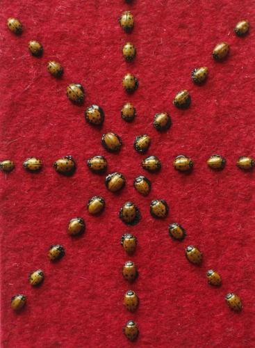 "Ladybugs 2008 (5"" x3"")"