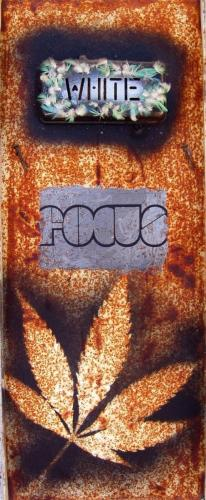 """Soft Focus 1998 (23"""" x 9"""")"""